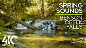 4K_Spring_sounds_of_Benson_Creek_Falls_Nanaimo,_BC,_Canada_NATURE