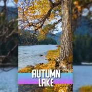 4k AUTUMN LAKE VERTICAL DISPLAY VIDEO 3 HOURS YOUTUBE