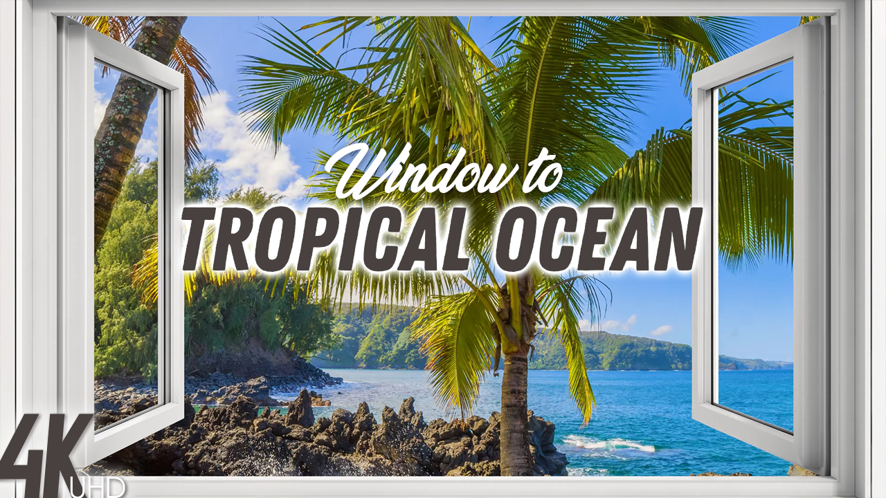 4k_Tropical_Ocean_View_HAAII_Episod_#2_NATURE_RELAX_VIDEO_8_hours