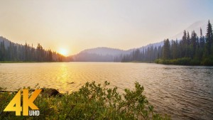 4k_Wildfire_Smoky_Sunset_At_Mount_Rainier_Nature_Relax_Video_YOUTUBE