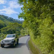 NEW_VERSION_FULL_HD_Driving_along_the_Maui_scenic_highway,_Hawaii