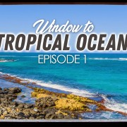 4K_Tropical_Ocean_View_Episod_#1_NATURE_RELAX_VIDEO_8_hours_YOUTUBE
