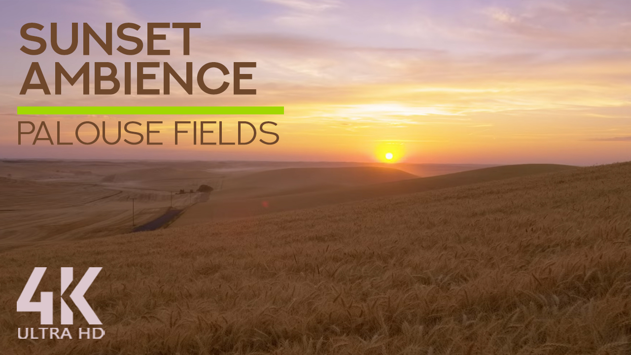 4k_BEAUTIFUL_SUNSET_AT_PALOUSE_FIELDS_Nature_Relax_Video_8_HOURS